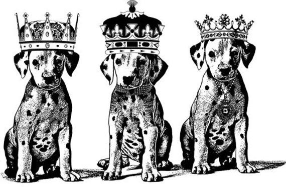 royal dalamation king queen puppy dog original art print ink drawings animal pets artwork by Elizavella