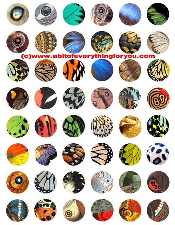 butterfly wing patterns clip art digital download collage sheet 1 inch circles graphics images craft pendant bottlecap printables