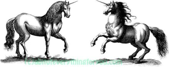 unicorn horse fantasy printable art print png clipart transparent digital download vintage image graphics instant downloadable fairytale art