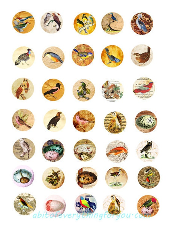 birds old paper collage sheet 1 inch squares clip art digital download graphics images  animal nature art craft pendant pins printables