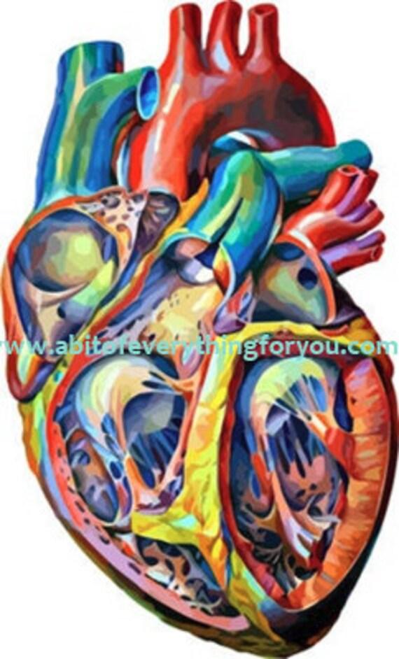 printable art colorful abstract human anatomy Heart digital download png jpg svg image graphics