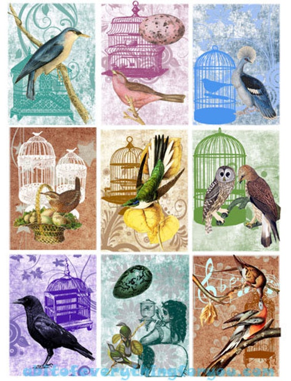 "birds eggs bird cage collage sheet digital download 2.5"" x 3.5"" graphics downloadable images animal wildlife printables diy crafts aceo"