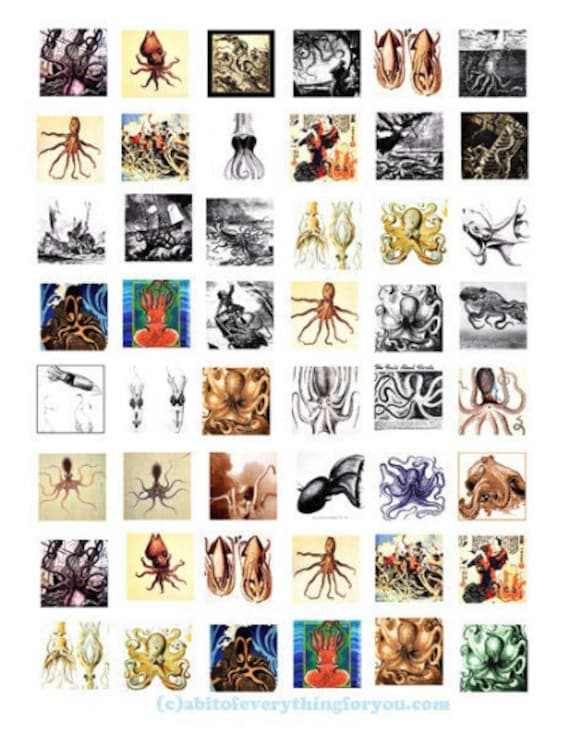 octopus squid digital collage sheet downloadable sealife ocean animal clipart 1 inch squares images pendant diy jewelry making printables