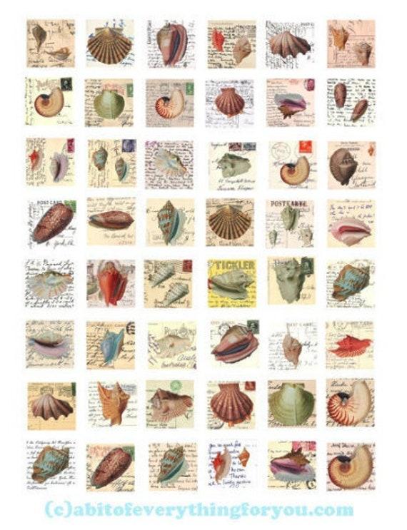 sea shells vintage postcard altered art digital collage sheet downloadable sealife ocean prints clipart 1 inch squares images diy crafts