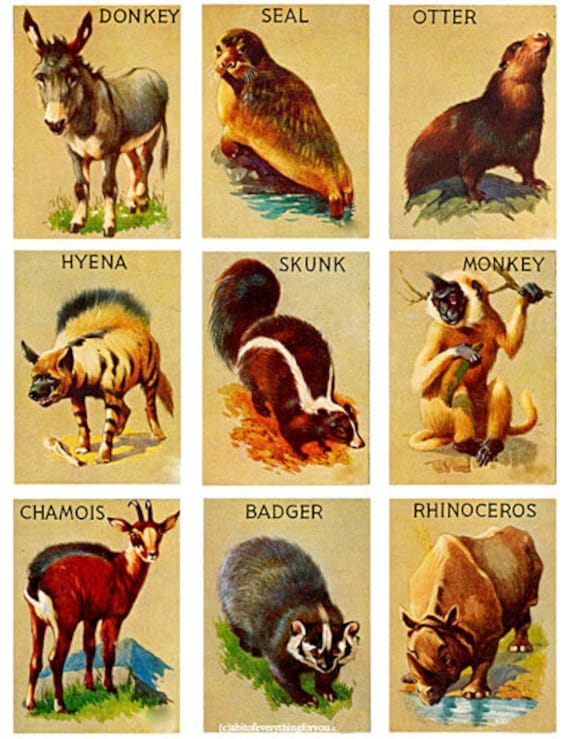 "vintage animal wildlife cards collage sheet digital download 2.5"" x 3.5"" graphics downloadable images printables tags diy crafts lables"