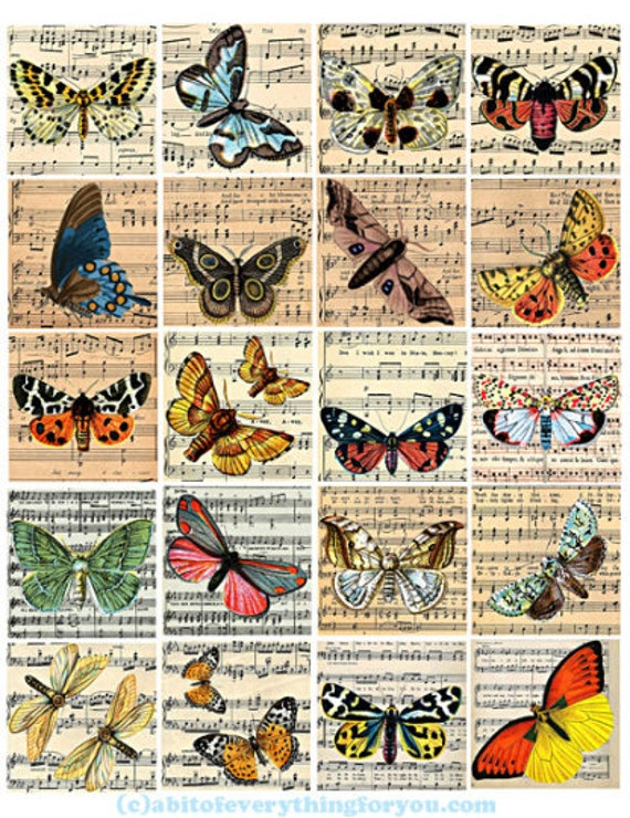 vintage butterfly sheet music art clip art digital download collage sheet 2 inch squares graphics nature images printables pendants