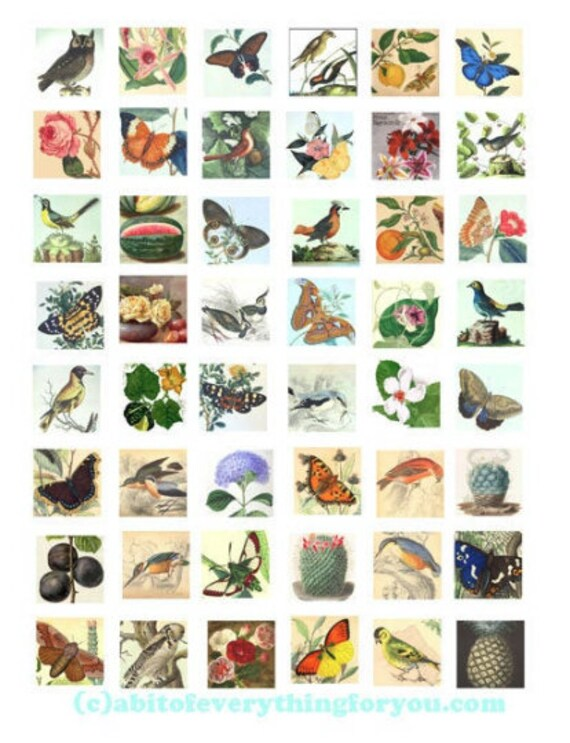 printable digital collage sheet birds butterflies flowers plants clipart 1 inch squares downloadable botanical images diy jewelry making
