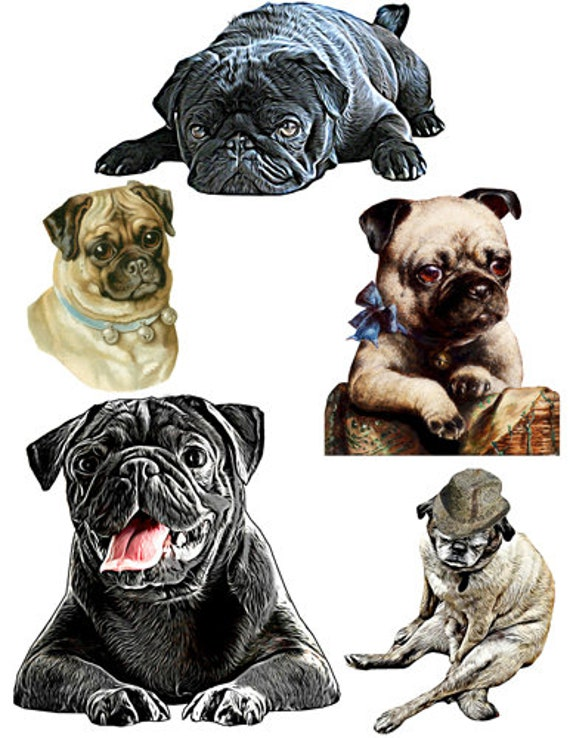 abstract and vinatge pug dogs puppies printable art clipart cut outs die cuts digital download image graphics instant downloadable