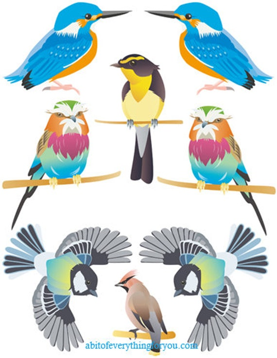 cartoon birds collage printable art nature animals graphics images digital download craft downloadable DIY print outs