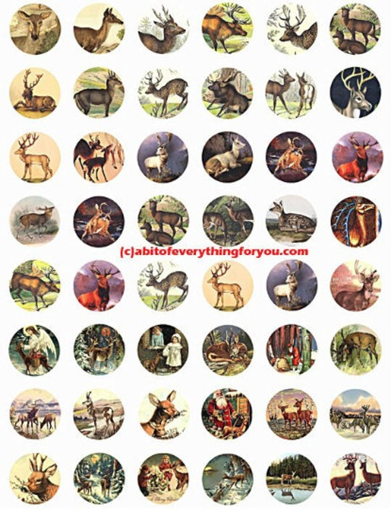 deer bucks does collage sheet 1 inch circles clip art digital download graphics images  animal nature art craft pendant pins printables
