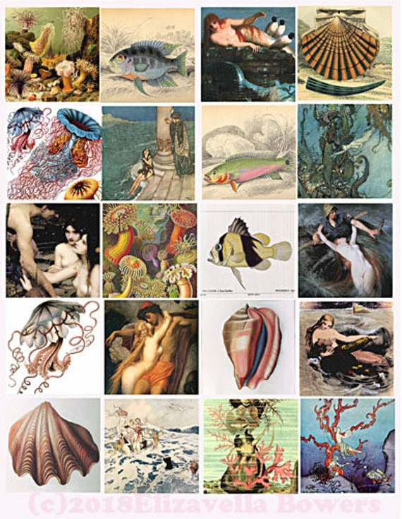 download collage sheet mermaids fish sealife vintage art clip art digital 2 inch squares graphics images craft pendant printable jewelry