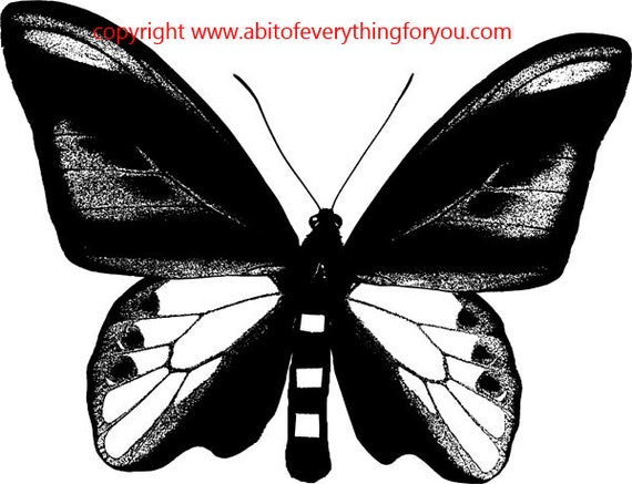butterfly insect bug printable art clipart png download digital vintage image graphics entomology digital stamp black and white