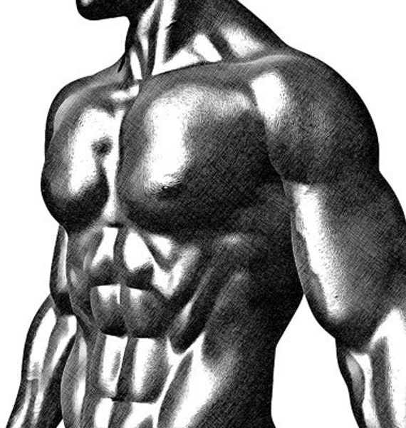 body builder pinup boy shirtless man printable art clipart png download digital image weight lifter graphics digital stamp