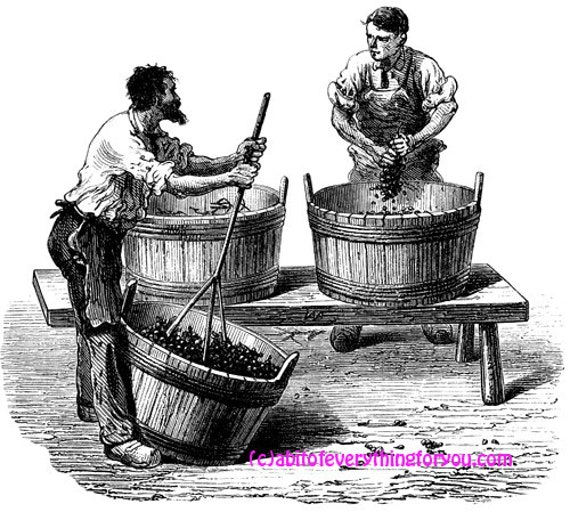 vintage men making wine grapes victorian printable art clipart png digital download image graphics instant downloadable black and white art