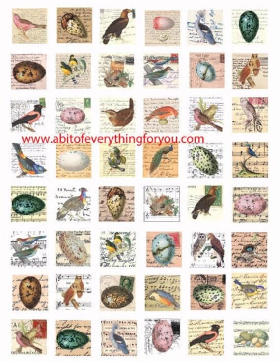 "vintage birds eggs nests postcards letters clip art digital download collage sheet 1"" inch squares graphics images craft printables"