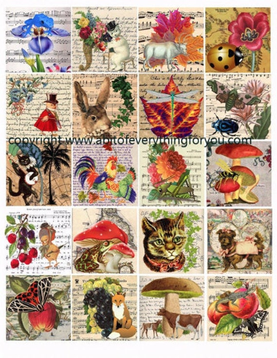 animals insects plants nature clip art digital download collage sheet 2 inch squares maps sheet music letters graphics images printables