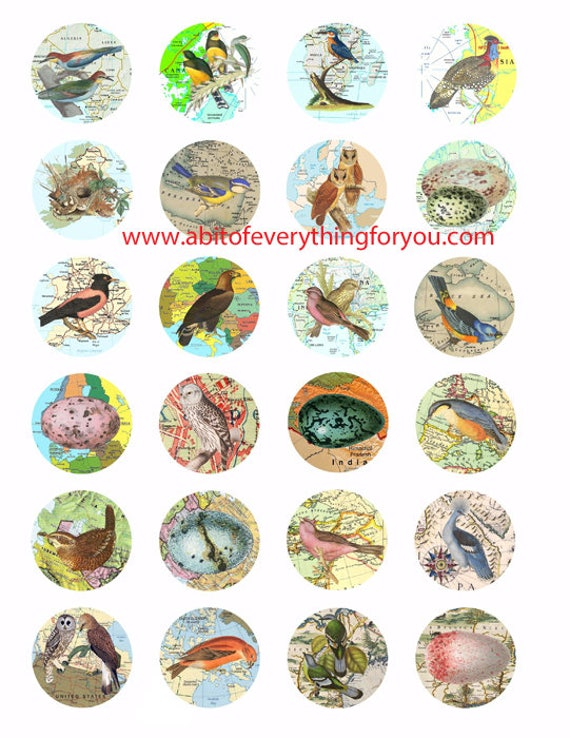 "birds eggs vintage maps clip art digital download collage sheet 1.5"" circles graphics images for pendants, cabochons, magnets printables"