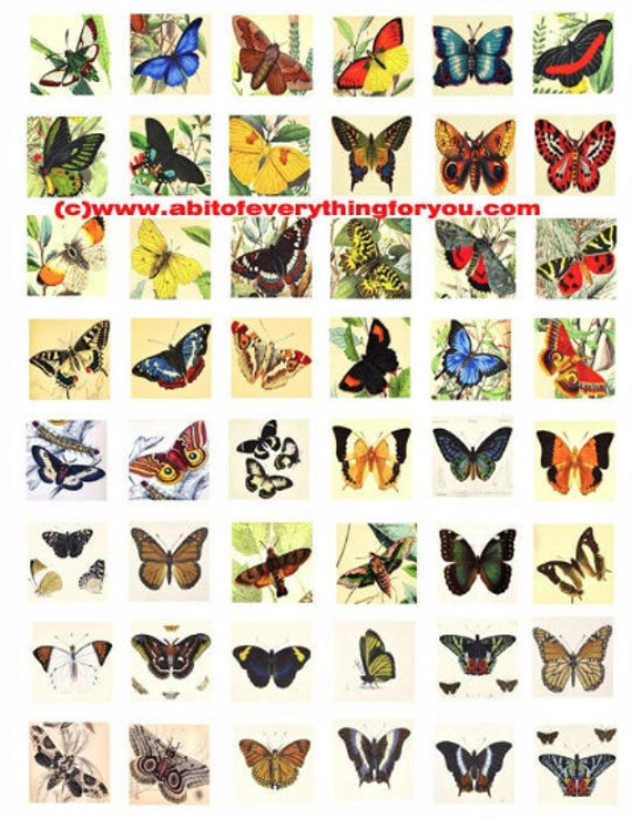 vintage butterfly moth insect bugs clip art digital download collage sheet 1 inch squares graphics images pendant printables