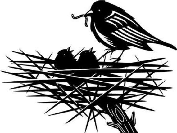 bird nest tree original printable art print png animals nature digital download graphics images vintage black and white artwork
