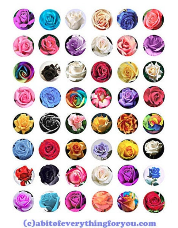 printable digital collage sheet roses flowers clipart 1 inch circles downloadable botanical images pendants diy jewelry making scrapbook
