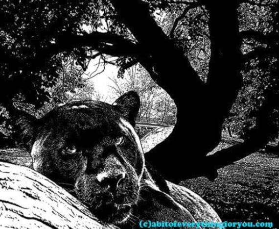 abstract leopards big cat jungle safari animal printable art png clipart download digital image graphics instant downloadable nature artwork