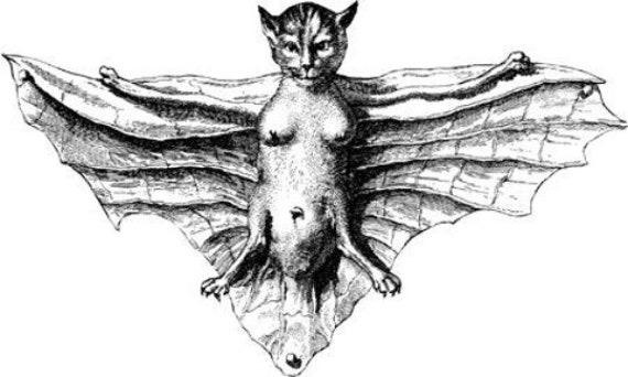 flying cat bat creature printable art clipart png jpg instant download monsters fantasy beasts digital downloadable tansfer image graphics