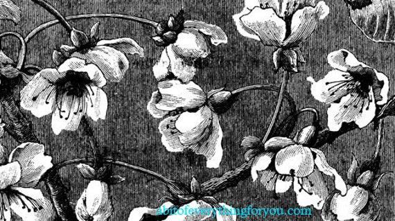 floral flowers pattern digital background vintage art printable digital downloadable image graphics floral prints black and white diy crafts