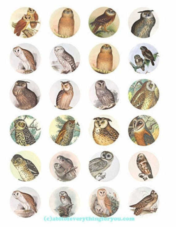 printable digital collage sheet vintage owls birds art clipart 1.5 inch circles animal nature images printables pendants diy jewelry making