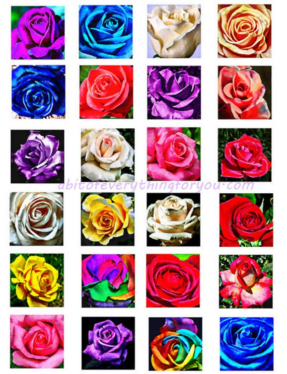 printable digital collage sheet abstract roses flowers clipart 1.5 inch squares downloadable botanical images pendants diy jewelry making