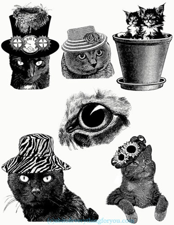 black and white cat kittens illustrations collage sheet printable art jpg png clipart animals digital download image graphics