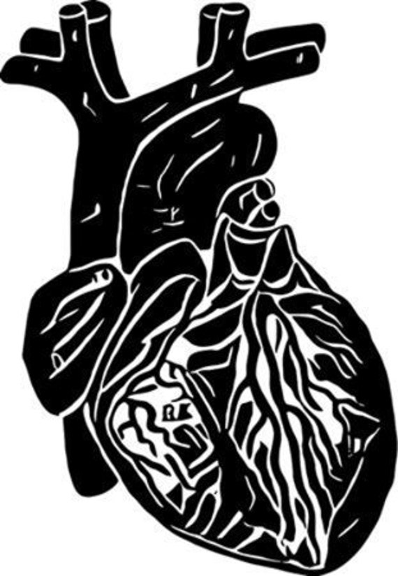 black Heart silhouette digital download png jpg svg human anatomy printable art transfer image stamp graphics abstract art black and white