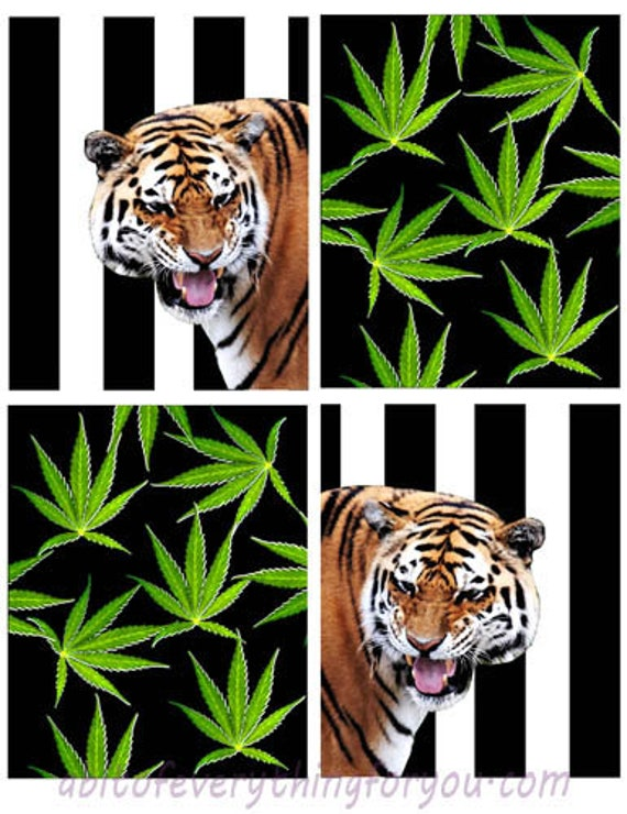 "tigers pot leaves marijuana cannabis collage sheet digital download 4"" x 5"" nature graphics downloadable images printable cards scrapbooking"