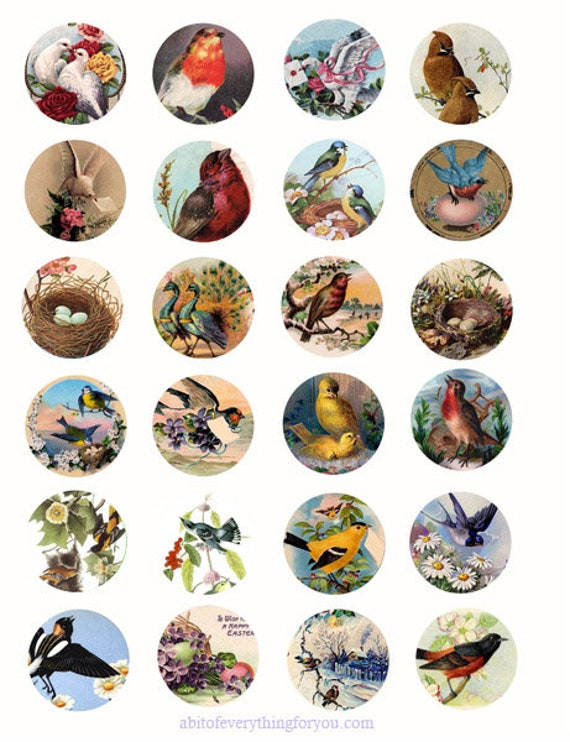 vintage birds flowers animal clip art digital download collage sheet 1.5 inch circles graphics images craft printables
