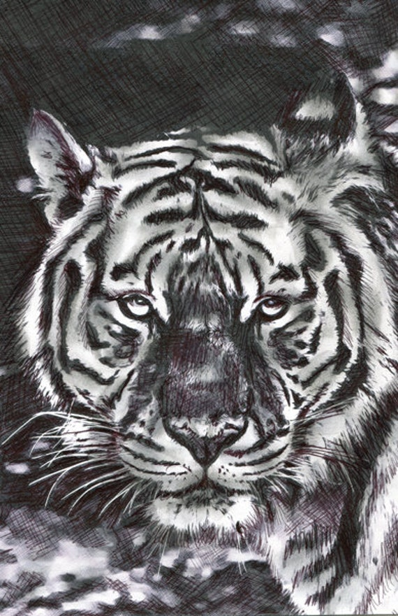 ORIGINAL ABSTRACT tiger pen ink drawing jungle safari animals wildlife art black and white illustration