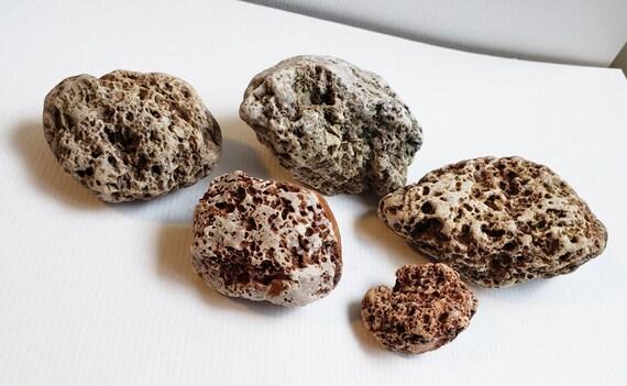 5 holy pitted rocks stones nuggets 10 oz fish tank aquarium terrarium decor natural crafts supplies