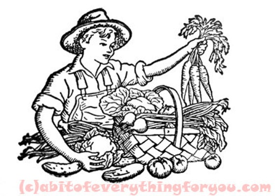 vintage farmer boy art garden coloring page line art printable images digital downloadable vegetable graphics downloads