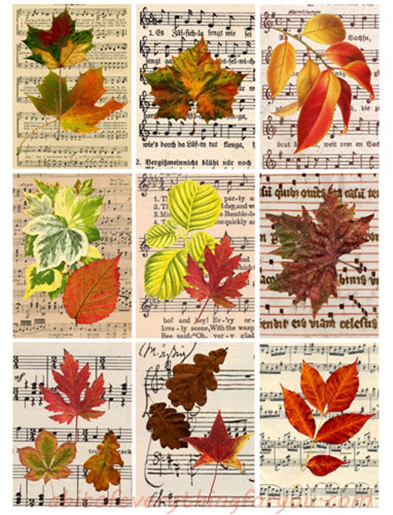 """leafs leaf sheet music collage sheet digital download 2.5"""" x 3.5"""" graphics downloadable images musical notes nature printables aceo cards"""
