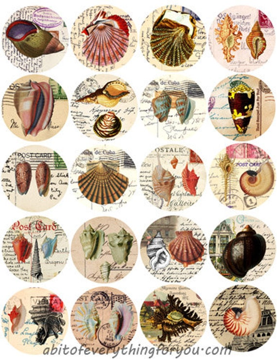 sea shells postcards vintage art collage sheet 2 inch circles clipart digital downloadable beach ocean sealife printable images