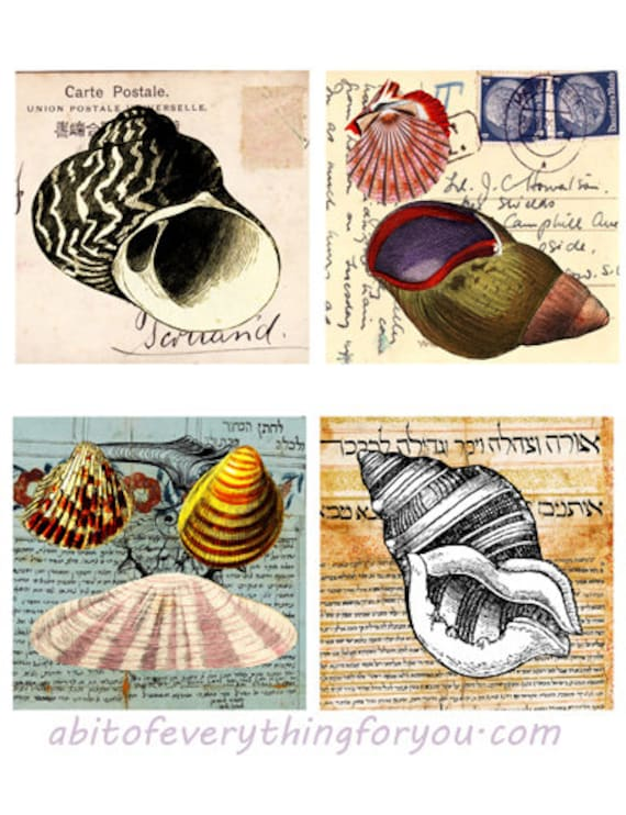 vintage postcards ephemera seashells collage sheet digital download nautical graphics downloadable beach ocean images printables diy crafts