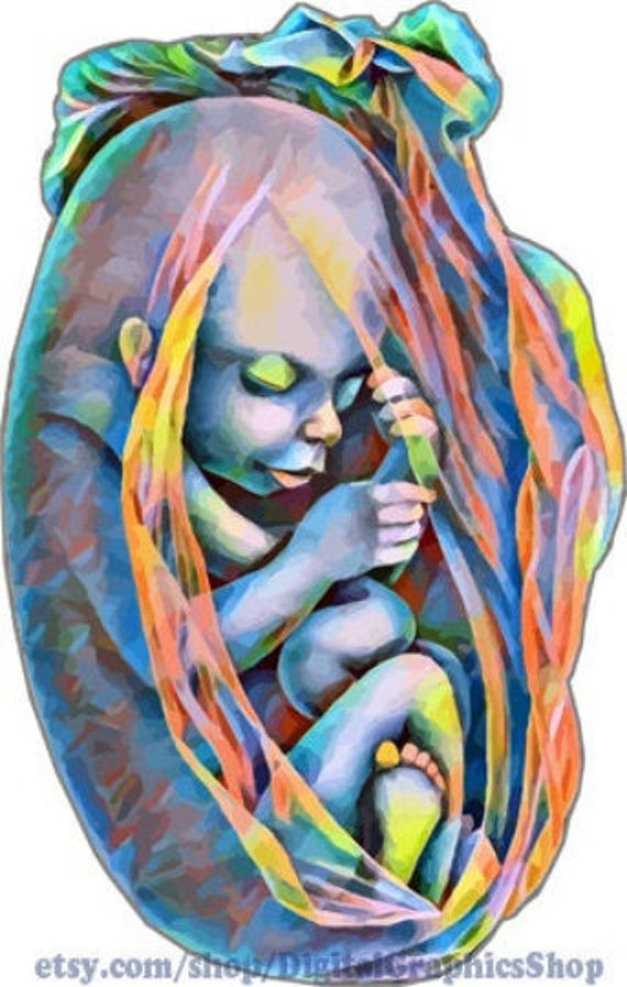 colorful abstract baby in womb human anatomy digital download png jpg svg printable wall art image graphics