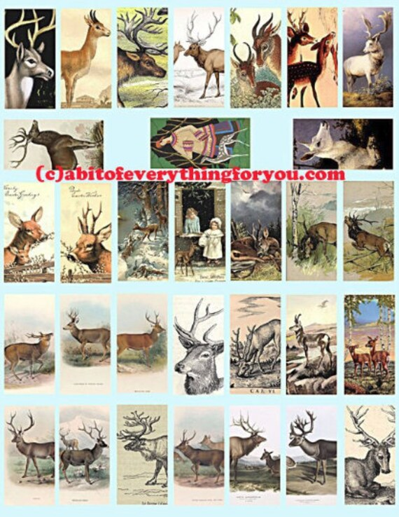 deer bucks does domino collage sheet 1 x 2 inch clip art digital download graphics images animal nature art craft pendant pins printables