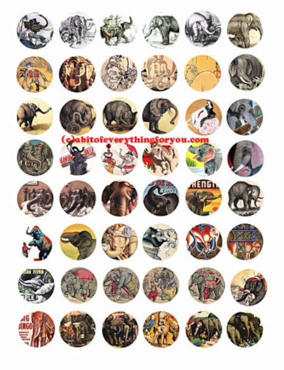 jungle circus elephants downloadable collage sheet 1 inch circles clipart digital download graphics images animal jewelry pendant bottlecap