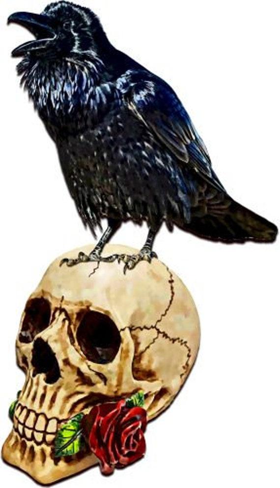 black raven crow bird skull printable painting art download goth digital image png jpg gothic graphics downloadable halloween spooky art