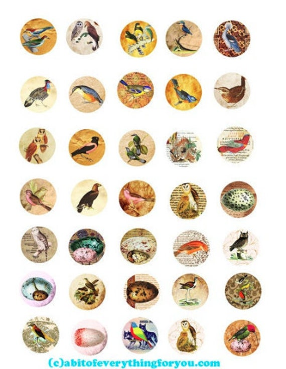 printable digital collage sheet antique paper birds art clipart 1 inch circles animal nature images printables pendants diy jewelry making