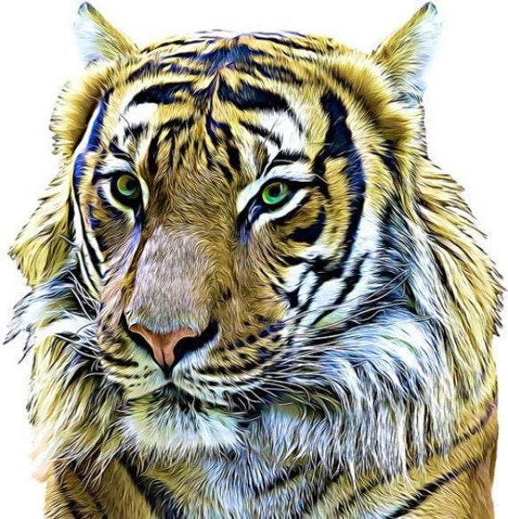 jungle tiger head png jpg clipart printable art digital download animals safari digital clip art realistic downloadable files