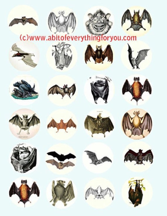 vampire bats nocturnal animals art clip art digital download collage sheet 1.5 inch circles graphics images craft printables
