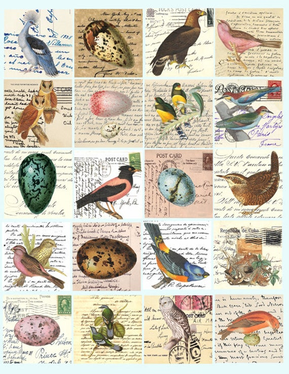 vintage bird eggs nests art postcards letters clip art digital download collage sheet 2 inch squares graphics images craft printables