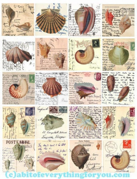 sea shells vintage postcard altered art digital collage sheet downloadable sealife ocean prints clipart 2 inch squares images diy crafts