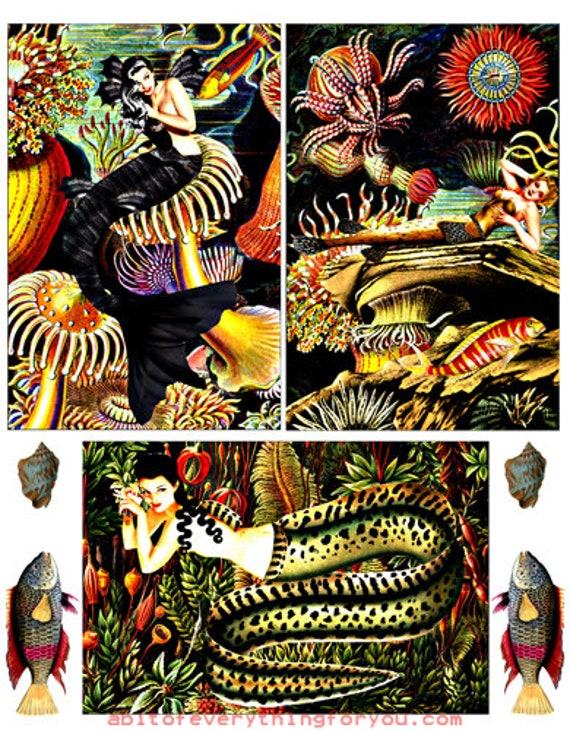 "download collage sheet mermaids fish sealife art clipart digital 4""x6"" inch downloadable pinup girls graphics images craft printable"