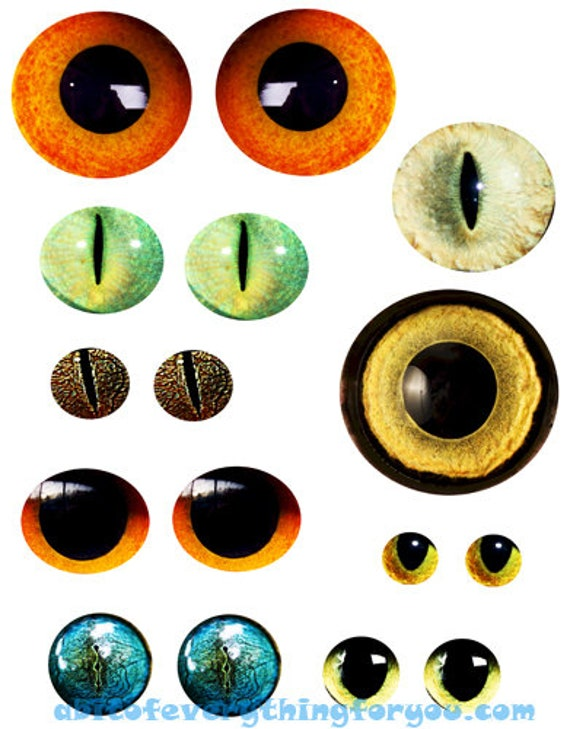 animal eyes downloadable collage sheet die cuts circles clipart digital graphics images downloads diy crafts scrapbooking